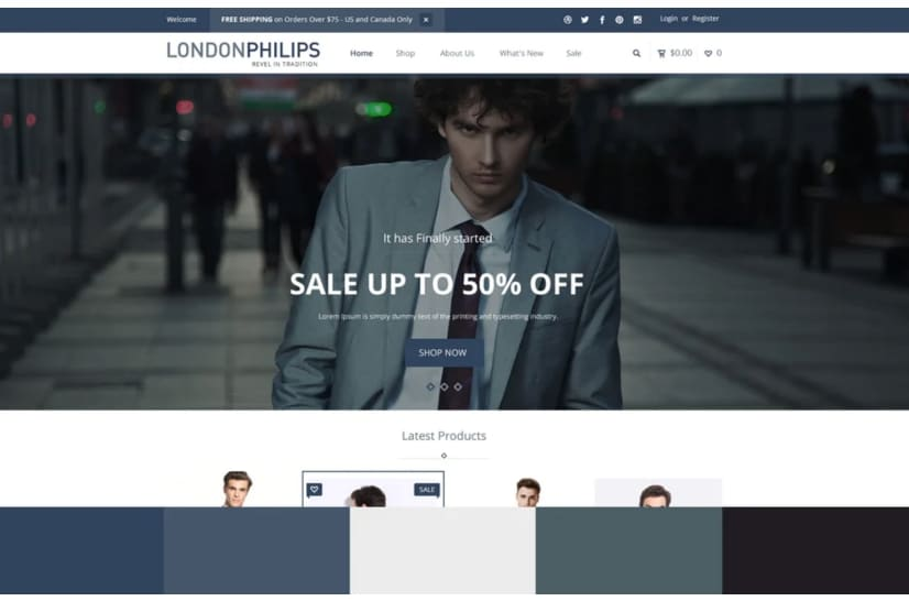 Monochromatic color scheme for online store